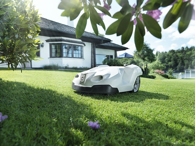 robot lawn mowers reviews